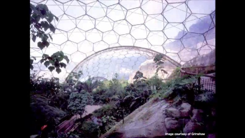 Biomimicry in Architecture » Human Response and Interior ...
